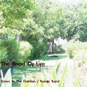the road of life 500x500